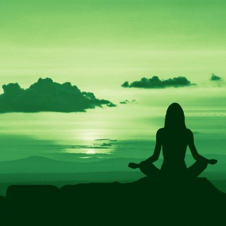 Formation en ligne en Mindfulness • Licence de 12 mois •