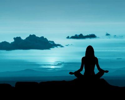 Formation en ligne en Mindfulness • Licence de 30 jours •