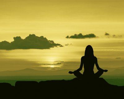 Formation en ligne en Mindfulness •Licence 3 ans •